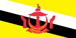 Флаг Бруней